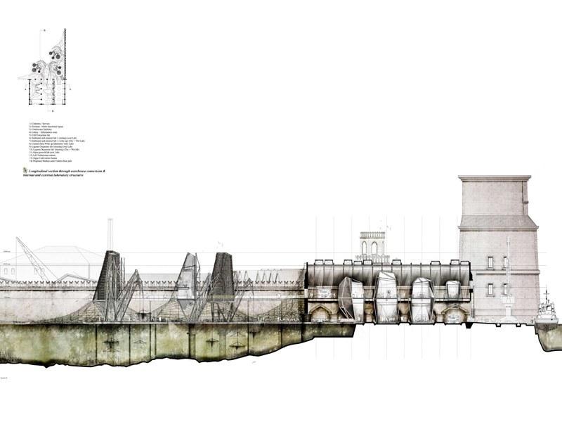 dmu-march-architecture-lsa-dmu-14